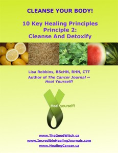 The 2nd Key Healing Principle is Cleanse Your Body ~ Download