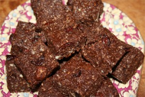 Raw Chocolate Cranberry Fudge Photo
