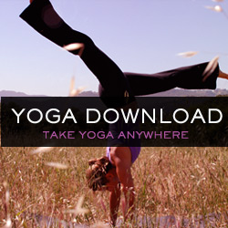 Yoga Download The best online resource for yoga, pilates, meditation, cardio and music