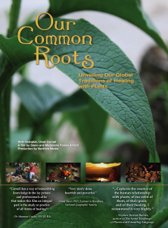 Our Common Roots Unveiling Our Global Traditions of Healing With Plants and Wild Foods photo