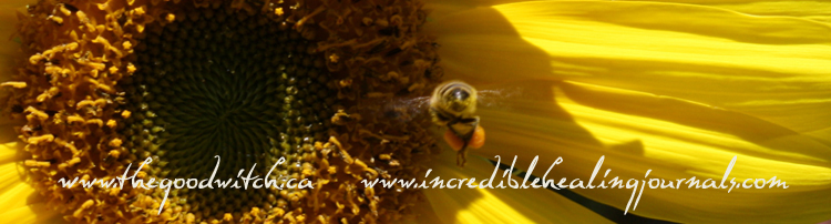 Sunflower banner at thegoodwitch.ca photo